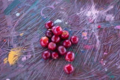 Fruta del café, Finca Combia, Calarca, Quindio, Colombia
