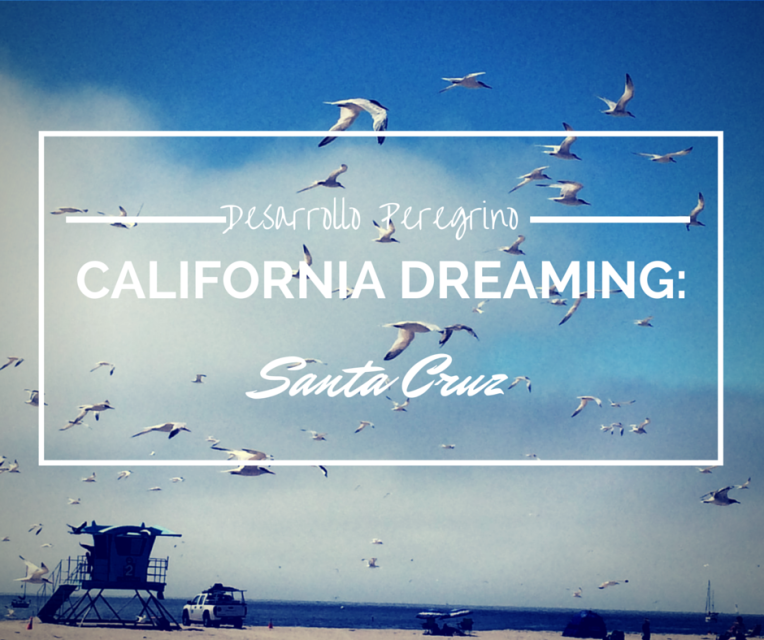 California dreaming- Santa Cruz