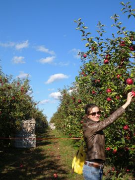 Apple Picking Hudson Valley