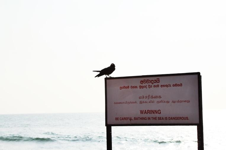 Anuncio de no bañarse en el mar en tres idiomas, singalés, tamil e inglés (con errores ortográficos incluidos)
