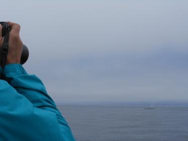 Efecto gris en el oceano pacifico