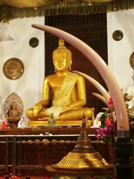 Buda en New Shrine Templo del Diente 2