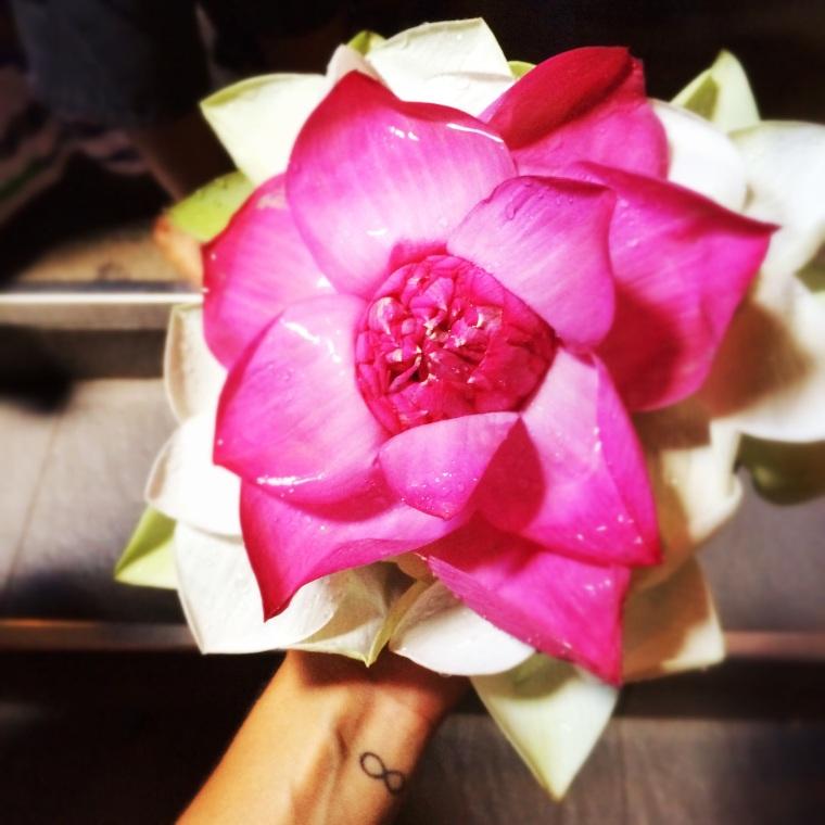 Flor de loto que compre como ofrenda