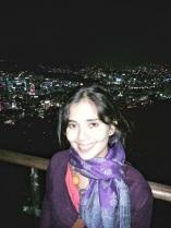 La vista de Seúl desde la torre N y yo