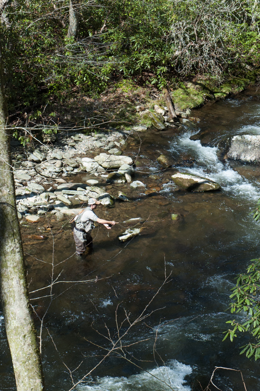 pesca great smoky mountains