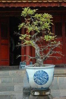 Conjunto de monumentos de Huê, Vietnam