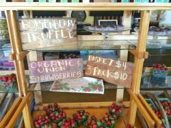 Precios en la Swanton Berry Farm