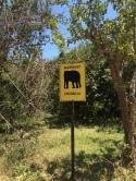 Letrero sobre el peligro de encontrarse elefantes