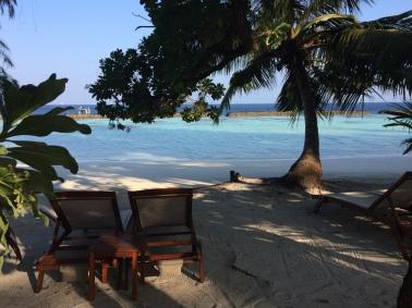 Las Maldivas y yo articulo