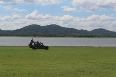 Jeep Safari en Parque Nacional Minneriya