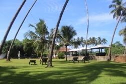 Jardín del Hotel Paradise Road The Villa Bentota