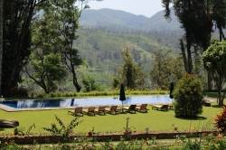 El hotel Tea Trails, la vista de uno de los Bungalows