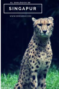 el-zoologico-de-singapur