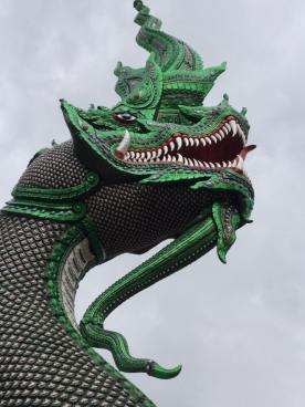 drago-en-el-templo-wat-bann-den-en-mae-taeng-2