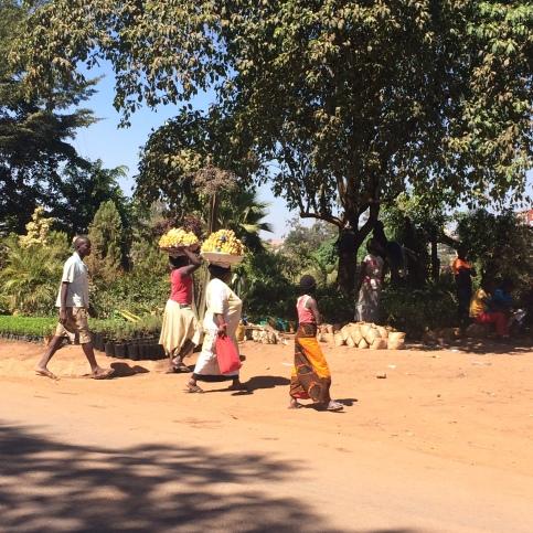 Señoras vendiendo banano en la calle