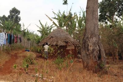 Bandas, casas circulares en Uganda