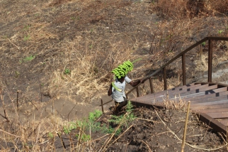 Ugandes subiendo las escaleras con una racimo de matooke