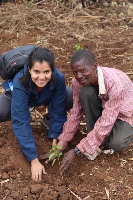 Tour de plantaciones de café en Sipi, Uganda Africa coffee tour