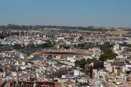 Vista desde la Torre La Giralda