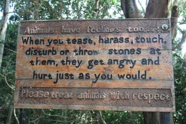 """""""""""Los animales tienen sentimientos también, cuando te burlas, los acosas, los tocas, le lanzas cosas, los molestas, se molestan así como tú lo harías. Por favor, trátalos con respeto."""""""